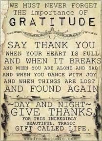 gratitude for everything...