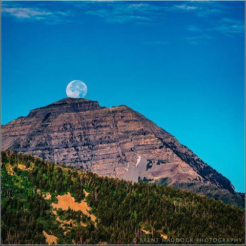 maan deurskynend.jpg