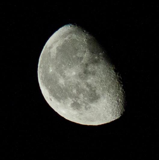 maan sterre.jpg
