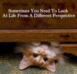 life different perspective