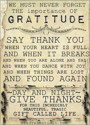 gratitude for everything...