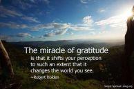 gratitude miracles